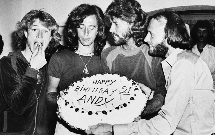 Andy, Robin, Barry and Maurice Gibb at the height of their influence and fame